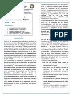 331640949-DIPTICO-PRESAS-CFRD.docx