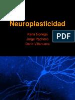 neuroplasticidad.
