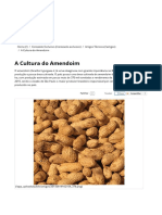 A Cultura do Amendoim.pdf