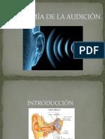 Anatomia de la audición