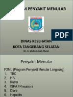 Program P2
