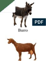 Bits Animales de La Granja