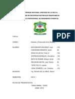 Informe de Secado Del Bambu