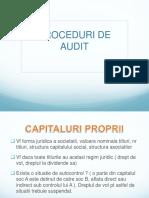 Proceduri de Audit