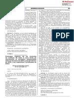 Resolución Directoral N° 071-2019-MTC/15