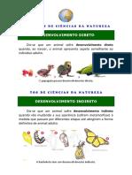 10_DES_DIRETO_INDRETO=CM.pdf