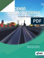 Creciendo-con-productividad-Una-agenda-para-la-Region-Andina.pdf
