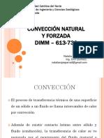 Clase 12 - Conveccion Natural y Forzada (2)