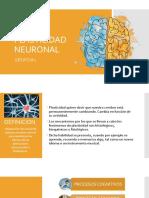 g1. Plasticidad Neuronal