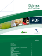 Brochure Diploma Creacion Modelos Simulacion Ambiental FV
