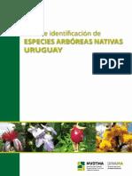 Guia de Identificacion de Especies Arboreas Nativas de Uruguay