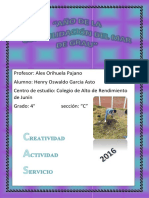 Portafolio Oswaldo