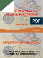 CPHS Minera Gaby