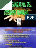 1. Organización Del Cuerpo Humano