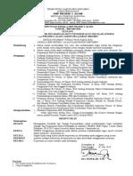 Sk Tim Tpmps Dan Audit Internal 2018