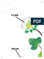Partes de La Flor Poster