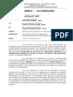 Modelo de Informe 2012