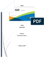 Manual de Trabajo ARCGis.docx