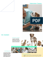 career as a vet project pdf