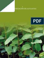 Caracterizacion de Las Plantas