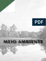 DA QUESTÃO AMBIENTAL À UNANIMIDADE DO DESENVOLVIMENTO SUSTENTÁVEL - Vanderli Custódio