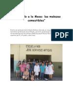 Del_Baldio_a_la_Mesa_las_malezas_comesti.pdf