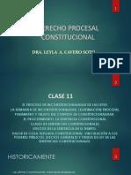 Clase 11 Derecho Procesal Constitucional [Autoguardado]
