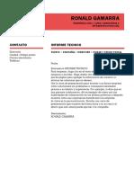 Ronald Gamarra Informe Tecnico