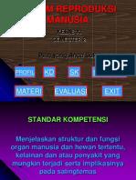 sistem-reproduksi-manusia.ppt
