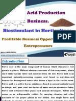 Fulvic Acid Production Business
