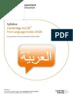 204295-2017-2019-syllabus