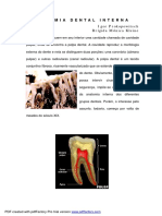 ANATOMIA DENTAL INTERNA.pdf