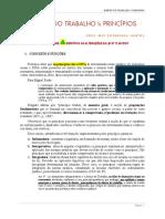 Apostila 2 - Prinicpios Especiais Do Direito Do Trabalho - Parte 1