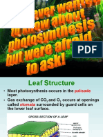 photosynthesisplantstructures-110820192835-phpapp02