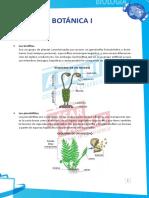 Botánica I – Resumen Teórico y Dirigidas.pdf