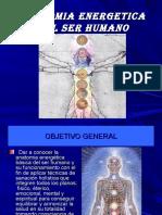Anatomia Energetica