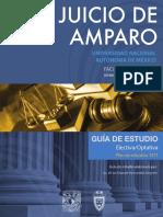 Guia Juicio Amparo (1)