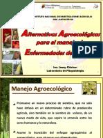 JENNY CHIRINOS. PRESENTACION. . Alternativas Agroecologicas Para El Manejo de Enfermedades