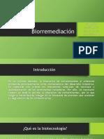 Biorremediación (3)