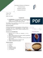 bioqui 10-12