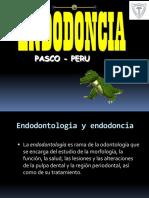 Generalidades de La Endodoncia