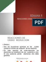 5 REACCIONES REDOX