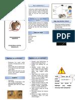 leaflet lepto fix.doc