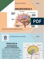 Psiconeurocia II