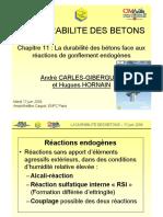 Ch11 La Durabilite Des Betons Face Aux Reactions de Gonflements Endogenes