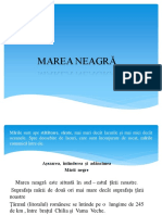 New Prezentare Microsoft PowerPoint