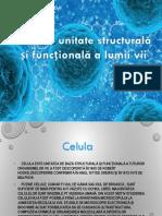Celula