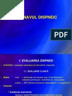 02 Bolnavul Dispneic 2015