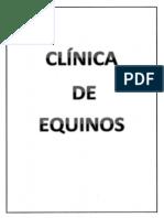 Clinica de Equinos