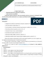 37808303638_Informatii examen si proiect - Anul II - FR.doc
